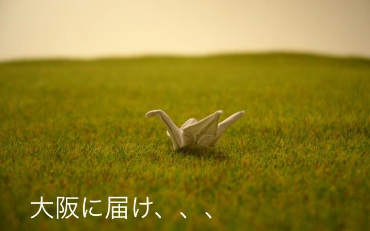 small-crane_Fotor